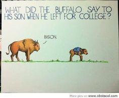 #todaysHumour . . . . #joke #jokes #pun #puns #clever #wordplay #playonwords #playwithwords #funny #funnies #todaysfunnies #fun #jokeoftheday #punoftheday #sillyjokes #humour #humor #humourous #humorous #buffalo #buffalojoke