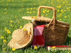 Winter is finally gone for good (well, at least for the next few months), and with this beautiful summer weather, no one wants to be stuck inside all day. In this article we give you some tips to have the ideal outdoor picnic, from location to the perfect dessert (homemade strawberry shortcake? Yes, please). #summer #activities #lifestyle #picnic #dessert #blog