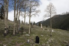 Irregularly placed tombstones at the old Hillside Cemetery, on Boulder Mountain above Silverton, the seat of San Juan County, Colorado, a legendary gold-rush town of the 19th Century and, at 9,313 feet above sea level, one of America's highest cities | Library of Congress