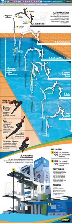 Salos natación Río 2016 Trampolines, Summer Time, Sports, Springboard