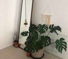 ideas for plants interieur appartement Bedroom Corner, Bedroom Art, Apartment Interior, Room Interior, Interior Plants, Plant Aesthetic, Room With Plants, Aesthetic Bedroom, My Room