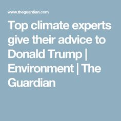 Top climate experts give their advice to Donald Trump | Environment | The Guardian