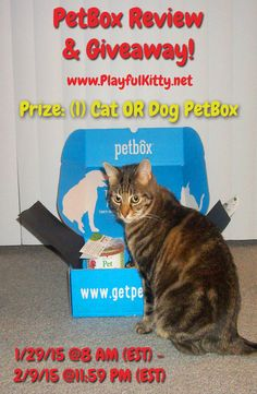#Win a Deluxe PetBox with 2-3 items for your cat or dog! Enter from 1/29/15 - 2/9/15. www.PlayfulKitty.net @thePlayfulKitty