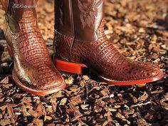 b47bc8cfb1 8 imágenes encantadoras de botas exoticas