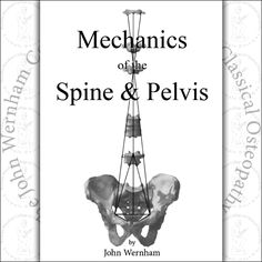 Mechanics of the Spine and Pelvis | The John Wernham College of ...