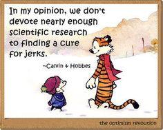 Love Calvin & Hobbes!