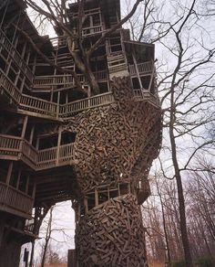 """Jenny Hampe on Instagram: """"#treehouse#vernaculararchitecture#architecture courtesy of @_a.wanderess_ !!!"""" Congratulations To You, Community, Treehouse, Architecture, Building, Artist, Platform, Autumn, Instagram"""