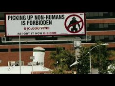 Official District 9 Movie trailer HD The Evolution of Film Tech) Epic Movie, First Contact, Movie Trailers, Film, Evolution, Youtube, Movies, Tech, Park
