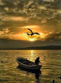 Boat, fisherman, seagulls, make a wonderful silhouette. Beautiful World, Beautiful Places, Beautiful Pictures, Landscape Photography, Nature Photography, Fishing Photography, Travel Photography, Amazing Sunsets, Beautiful Sunrise