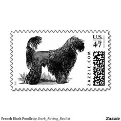 French Black Poodle Postage