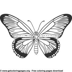 Butterfly 22 Coloring Pages Insect Coloring Pages, Adult Coloring Pages, Quilling Patterns, Writing Ideas, Pencil Drawings, Free Printables, Butterflies, Hearts, Clip Art