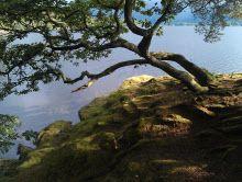 Joe Cornish Photography  #photography #landscape #landscapephotographer #nationaltrust