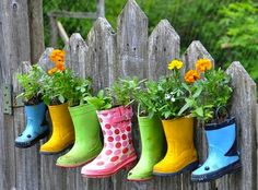 Cute and creative container planting.