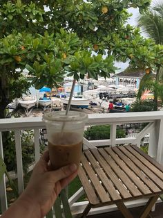 Play And Stay, Bahamas Island, Local Hotels, Bahama Mama, Beaches In The World, Caribbean Sea, Family Travel, Things To Do, Exotic
