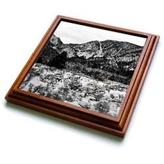 A black and white of a snow covered mountain Trivet