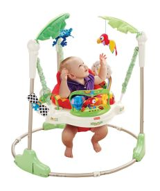 Fisher-Price Rainforest Jumperoo ~ $85 - $100: Baby can spin around in his seat and jump off the ground with his feet; this Jumperoo is incredibly popular with little ones. Read more here: http://www.lucieslist.com/baby-registry-basics/playing/#jumpers