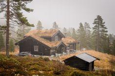 (1) FINN – DRØMMEHYTTE PÅ NOREFJELL: Unik laftet hytte på selveiet tuntomt. 20 meter fra langrennsløype, 10 min. til skisenter