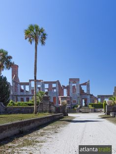 Hike to the ruins of Dungeness, a former Carnegie family mansion, on Cumberland Island