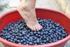 Female feet crushing grapes to make wine
