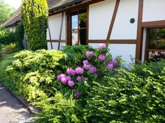 Ottmarsheim 2 juin.