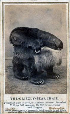 Grizzly bear chair, presented in 1865 to Andrew Johnson--a president peculiarly unworthy of such a rad chair, we may say in retrospect.