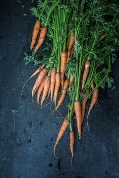 Food — Helen Cathcart