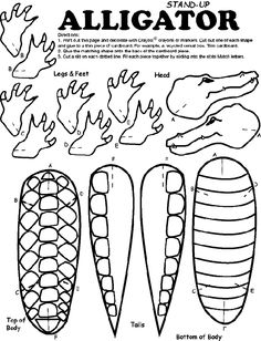 Trend Gator Coloring Pages 94 alligator colouring page