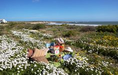 Abalone House is situated within Paternoster and offers five-star seaside accommodation with magnificent ocean views, and the well known Reuben's restaurant and a spa on site Town And Country, Atlantic Ocean, West Coast, Wind Chimes, Seaside, Cape, Dolores Park, Backdrops, South Africa