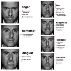 emotion in the human face paul ekman - Google Search