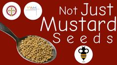 Be the Bee - Not Just Mustard Seeds #Orthodox