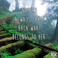 Pagan quotes - Nature is my church – Pagan inspiring images and quotes