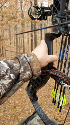 Animal Games, Bow Hunting, Bows, Archery, Arches, Bow Arrows, Bowties, Field Archery, Bow