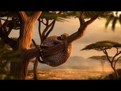 Kyra & Constantin  Rollin' Wild (Leopard)