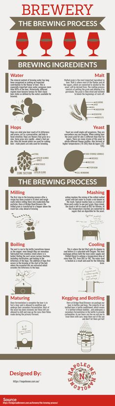 The following infographic is designed by Napoleone Brewers.  In this infographic, we summarize a brief overview of the basic steps of beer brewing process. The brewing process starts by switching over to automatic brewing. The control system guides the user through the various steps and runs through the four brewing phases fully automatically.