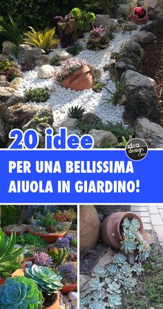 20 flower beds to be made in the garden with succulents, stones, stones, with amphoras and terracotta pots. Be inspired by these 20 inspirations to create a dream garden! Ferns Garden, Garden Trees, Garden Paths, Trees To Plant, Garden Bar, River Rock Landscaping, Landscaping With Rocks, Small Gardens, Outdoor Gardens