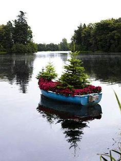 A unique container garden!floralsandstripes: Picture Perfect Polly--don't live on a lake or have a boat laying around, but love this! Unique Garden, Garden Art, Garden Design, Floating Garden, Floating Boat, Floating Flowers, Flea Market Gardening, Deco Floral, Noel Christmas