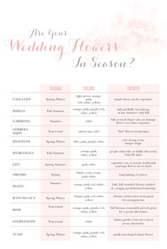 Good to know ingeneral what flowers are in season.Are your Wedding Flowers in Season? Wedding Planning Tips, Wedding Tips, Wedding Planner, Our Wedding, Dream Wedding, Wedding Stuff, Wedding Decor, Floral Wedding, Wedding Bouquets