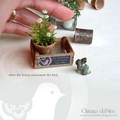 Le Petit Monde d'Oiseau