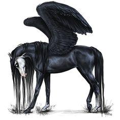 100 blup unicorn icelandic horse black 5292989 for Thoroughbred tattoo lookup