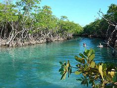 The real Gilligan's Island near Guanica, Puerto Rico