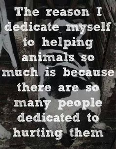"""@peep68: ""@Buddy2Blogger: Why I support #animalrights RT if you agree #animals pic.twitter.com/BNdJr77T0L""  Sadly true...too many evil people."""