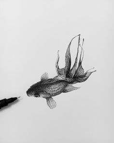 Creator and creation. Ink Stippling in Black and White. Click the image, for more art by Rostislaw Tsarenko. Koi Fish Drawing, Fish Drawings, Pencil Art Drawings, Art Drawings Sketches, Animal Drawings, Black And White Art Drawing, Black And White Sketches, Black Goldfish, Pointillism Tattoo