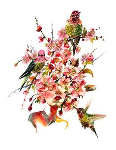 Sakura | Sunny Gu #watercolor #illustration