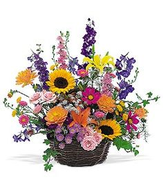 Order Summertime Sensation Basket from Portland Florist Shop, your local Portland florist. Portland Florist Shop for fresh and fast flower delivery throughout the Portland, OR area. Flowers Today, Fake Flowers, Summer Flowers, Amazing Flowers, Silk Flowers, Beautiful Flowers, Summer Flower Arrangements, Floral Arrangements, Sunflower Arrangements