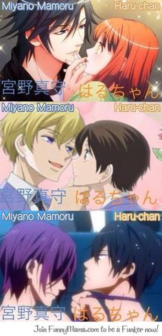 Miyano Mamoru's voices (Icihnose Tokiya, Suoh Tamaki and Matsuoka Rin) **u** Anime Boys, Otaku Anime, Manga Anime, Jinguji Ren, Ouran Highschool, Ouran Host Club, High School Host Club, Anime Crossover, Uta No Prince Sama