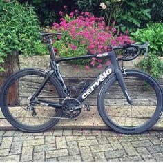 "Loves road bikes on Instagram: "" Cervelo S5 @keogh_cian #lovesroadbikes #cervelo #cervelos5 #rotor3d #wheelsmith #shimano"""