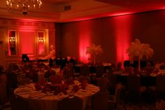Party Lighting, Star Wars, Corporate, Photo Booth, Party Planning, North Carolina, Entertainment, Red, Photo Booths