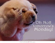 Oh no!! Tomorrow's monday. Picture Quotes.
