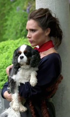 Victoria Beckham with a tricolor Cavalier King Charles Spaniel!