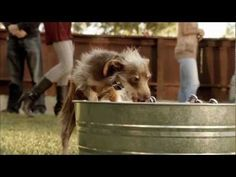 HERE WEEGO!!!  The buzz online is that this is the best commercial of Super Bowl XLVI (2012)